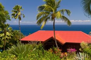 Maison créole, palmier, mer, jardin botanique, Guadeloupe